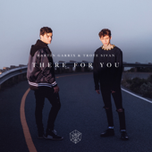 There for You - Martin Garrix & Troye Sivan