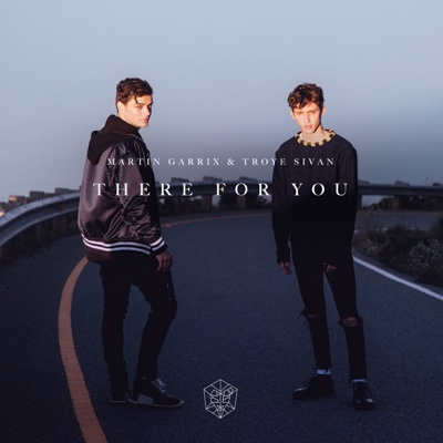There For You - Martin Garrix & Troye Sivan song