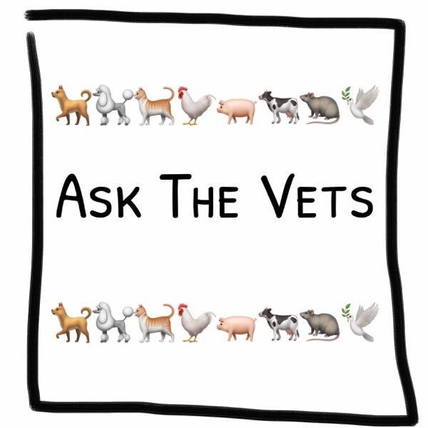 Ask The Vets