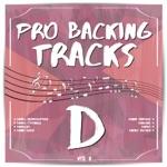 Pro Backing Tracks D, Vol.2