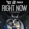 Right Now feat SOB X RBE Ziggy Single