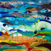 The Contribution - Wilderness and Space