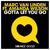 Gotta Let You Go (feat. Amanda Wilson) [Remixes]
