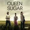 Queen Sugar, Season 1 - Synopsis and Reviews