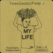 My Life (feat. Peter J)