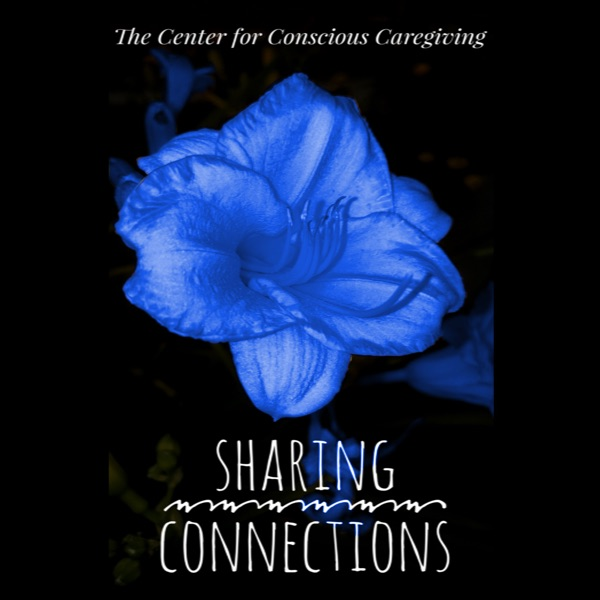 Sharing Connections