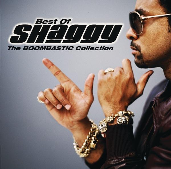 Shaggy mit Boombastic