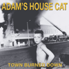 Town Burned Down - Adam's House Cat