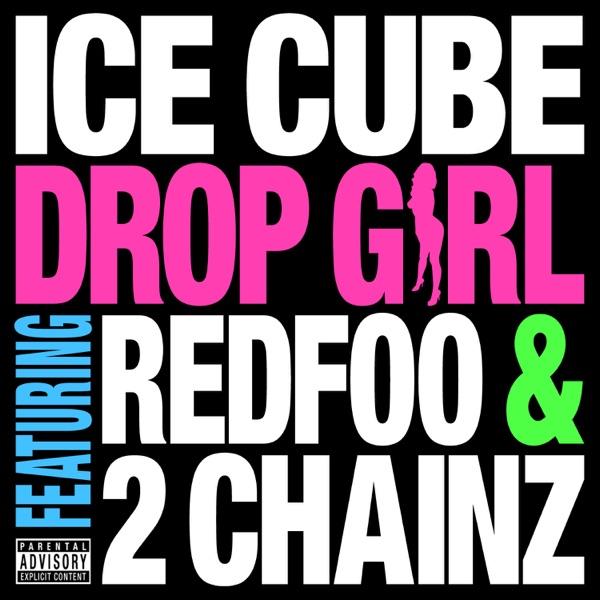 Drop Girl (feat. Redfoo & 2 Chainz) - Single