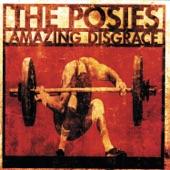 The Posies - Grant Hart