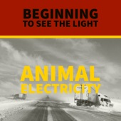 Animal Electricity - Confidence Games