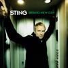Sting - Desert Rose artwork
