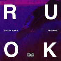 Skizzy Mars & Prelow - R U Ok? artwork