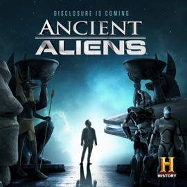 The Alien Protocols