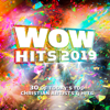 Various Artists - WOW Hits 2019  artwork