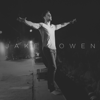 Jake Owen - Down To the Honkytonk artwork