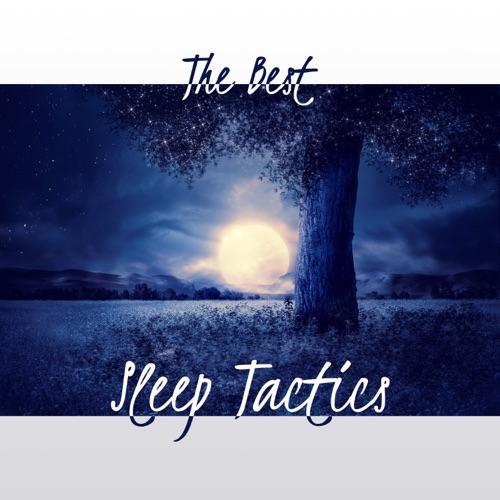 DOWNLOAD MP3: Deep Sleep Music Academy - Book Reading Background