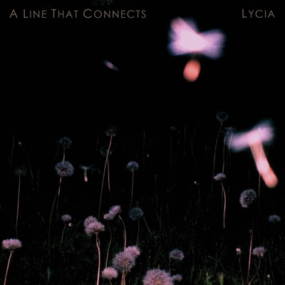A Line That Connects - Lycia