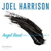 Joel Harrison - Jerusalem Ridge (feat. David Binney)