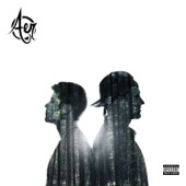 Aer - Whatever We Want