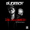Rudeboy - Is Allowed (feat. Reminisce) artwork