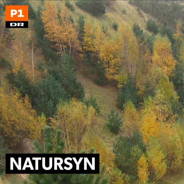 Natursyn