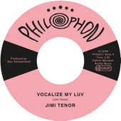 Jimi Tenor - Vocalize My Luv
