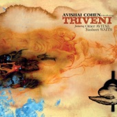 Avishai Cohen - You'd Be So Nice To Come Home To