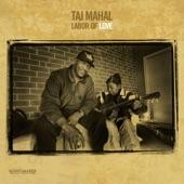 Taj Mahal - John Henry