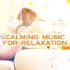 Relaxing Beats - Dreamland artwork