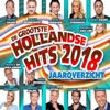 Hollandse Hits Jaaroverzicht 2018