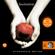 Stephenie Meyer - Twilight 1 - Fascination