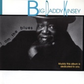 Big Daddy Kinsey - Nine Below Zero