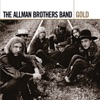 The Allman Brothers Band: Gold ジャケット写真