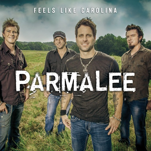 Art for Musta Had A Good Time by Parmalee