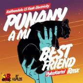 Punany a Mi Best Friend (Kalibandulu X Kush Electricity Remix)