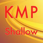 Shallow (Originally Performed by Lady Gaga & Bradley Cooper) [Karaoke Instrumental]