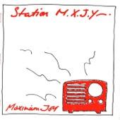 Maximum Joy - Searching For a Feeling