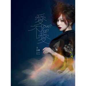 Cyndi Wang - 匿名的安慰
