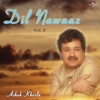 Dil Nawaaz Vol 2