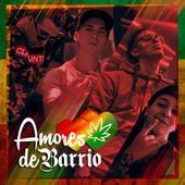 Amores de Barrio (feat. Sloowtrack & Bulper)