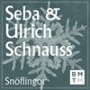 Snöflingor - Single ジャケット写真