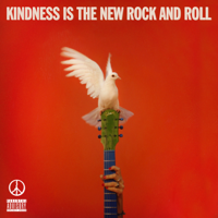 Peace - Kindness Is The New Rock And Roll artwork