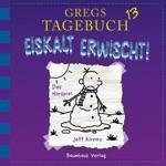 Gregs Tagebuch 13: Eiskalt erwischt! (Hörspiel)