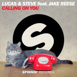 Calling On You (feat. Jake Reese) - Single Mp3 Download