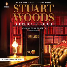 A Delicate Touch (Unabridged) audiobook