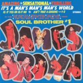 James Brown & The Famous Flames - It's a Man's, Man's, Man's World