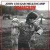 Scarecrow, John Mellencamp