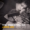 The Essential 2.0 - Janis Ian