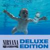 Nirvana - In Bloom bild